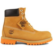 Timberland Sneaker 6 Inch-44 - 10