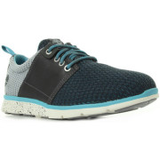 Timberland Sneaker Killington Oxford