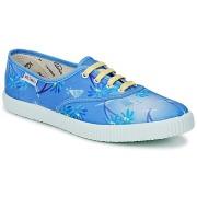 Victoria Sneaker 6729